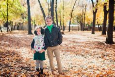 Brother and sister walking in an autumn Park. stock photography