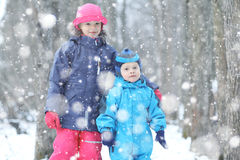 Brother and sister in winter park Stock Images
