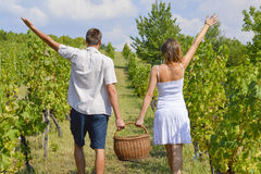 Brother and sister working on grape picking and holding the bask Stock Photo