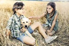 Brother y hermana en un campo de trigo con un perro Imagen de archivo libre de regalías
