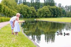 Brother y hermana que se divierten en el parque Imagen de archivo libre de regalías