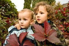 Brothers. With fallen autumnal leaves Royalty Free Stock Photos