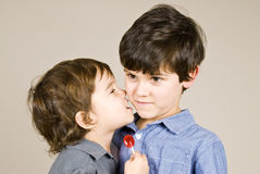 Brothers. Two cute little boys hugging stock photography