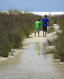 Brothers Beach Exploring. Young brothers tromp through the water and continue exploring through the reeds to the beach on the other side of Sand Island at Panama Stock Image