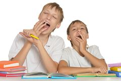 Brothers doing homework Stock Photo