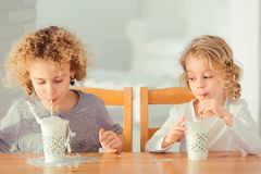 Brothers drinking milk. Two little brothers drinking milk in the kitchen royalty free stock photography