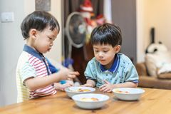 The brothers are enjoying their favorite omelet before going to school royalty free stock photos