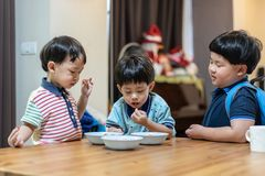 The brothers are enjoying their favorite omelet before going to school royalty free stock image
