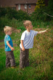 Brothers in the field. Brothers picking blackberries in the field Royalty Free Stock Image