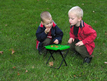 Brothers or friends playing. On grass royalty free stock images