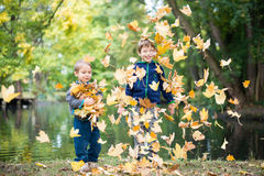 Brothers having fun with leaves in a park Stock Photos