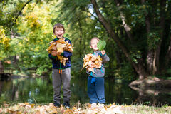 Brothers having fun with leaves in a park Stock Images