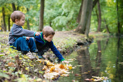 Brothers having fun with leaves in a park Stock Image