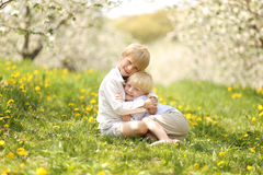 Brothers Hugging Outside in Flower Meadow. Two cute, happy blonde haired brothers are sitting outside under the apple trees in a flower meadow, hugging stock photos