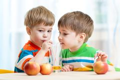 Brothers kids drink juice together from single royalty free stock photos