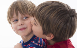 Brothers Love. Isolated on the white background Royalty Free Stock Images