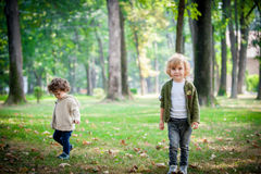 Brothers in the park Stock Images