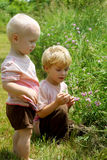Brothers Picking Flowers Stock Images