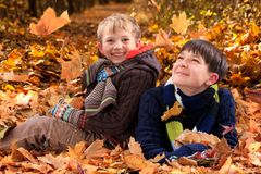 Brothers playing in Autumn royalty free stock photos