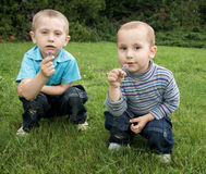 Brothers playing in the meadow Royalty Free Stock Photo