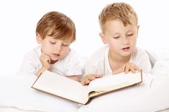 Brothers read royalty free stock image