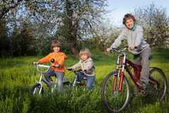 Brothers ride on bikes. Outdoors Stock Photos