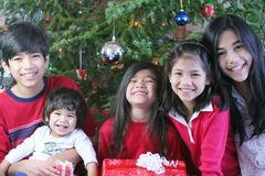 Brothers and sisters at Christmas Royalty Free Stock Photos