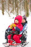 Brothers in sleighes Stock Photography