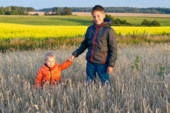 Brothers in the yellow field Royalty Free Stock Photography