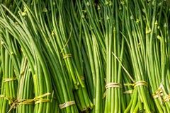 Brotos orgânicos do alho Fundo do alimento Fotos de Stock Royalty Free