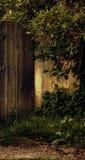 brouette Photo stock