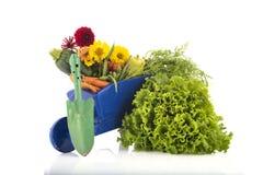 Brouette de roue avec des légumes Photos stock