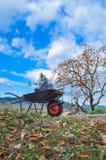 Brouette sur une colline une journée agréable d'automne photo stock