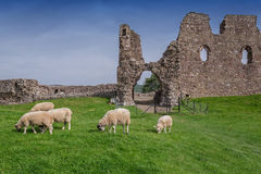 Brough Castle Royalty Free Stock Photography