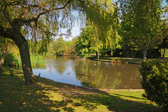 Brough Park Royalty Free Stock Photography