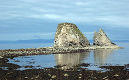 Free Brough Rocks,near Dunnet Head Caithness, Scotland,UK Stock Image - 16593631