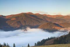 Brouillard à l'aube dans les montagnes Photo stock