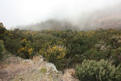 Brouillard épais et dense entre les crêtes des Alpes d'Apuan en Toscane images libres de droits
