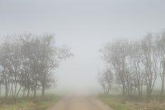 Brouillard épais sur une route de campagne avec des arbres des deux côtés Image stock