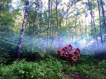 brouillard Images stock