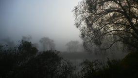Brouillard au-dessus de l'étang Début de la matinée photos stock
