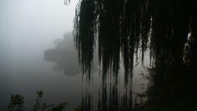 Brouillard au-dessus de l'étang Début de la matinée katowice photo stock