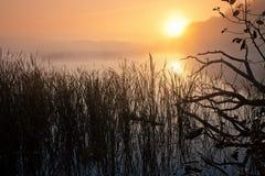 Brouillard au-dessus de la rivière Photographie stock libre de droits