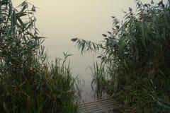 Brouillard au-dessus de la rivière dans le matin d'été Image libre de droits