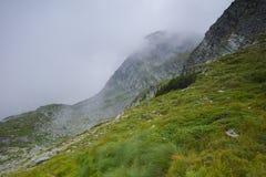 Brouillard au-dessus des collines vertes près des sept lacs Rila Images stock
