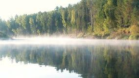 Brouillard au-dessus du fleuve La forêt d'automne est reflétée dans l'eau banque de vidéos