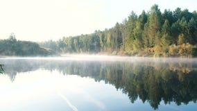 Brouillard au-dessus du fleuve Le beau paysage d'automne de la forêt est reflété dans l'eau sur la rive banque de vidéos