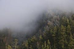 Brouillard. Bashkortostan. Les Monts Oural méridionaux Photos stock