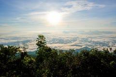 Brouillard beau Photo libre de droits