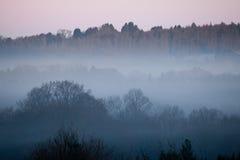 Brouillard d'aube Photo libre de droits
